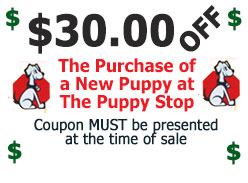 Click to Print! Coupon twards your new puppy